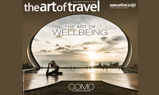 The Art of Travel Vol. 37